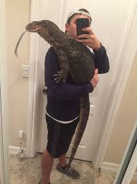 11alive com 6 foot pet asian water lizard escapes into florida