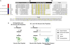 frontiers ginkgotides proline rich hevein like peptides from