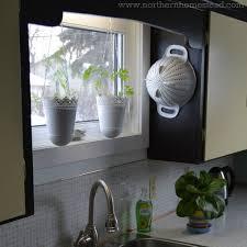 where to grow an edible window garden northern homestead