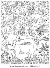 coloring deer forest coloring book stock vector 462742486