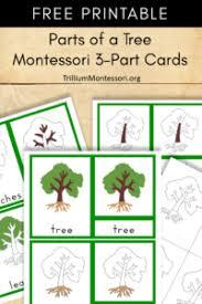 montessori tree printable get ready for may trillium montessori