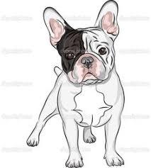 how to draw french bulldog roscoe boy pinterest french