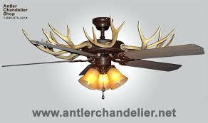 Authentic Antler Chandelier Whitetail Deer Antler Chandelier U2013 Eimat Co