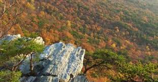 Alabama National Parks images Cheaha state park alapark jpg