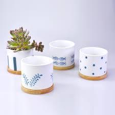 japanese mini pots tumbleweed plants