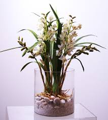 Office Container Suppliers In South Africa Flora Mystique U2013 Welcome To Flora Mystique