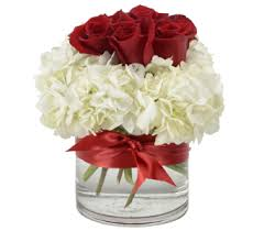 white hydrangea our 6 roses white hydrangea in worthington oh up