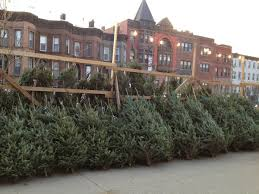 real christmas trees for sale where to buy a christmas tree in park slope