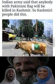 Nigger Memes - muslim curry niggers 1 hindu curry niggers 0 by guest 7114 meme
