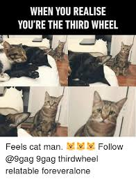 Third Wheel Meme - when you realise you re the third wheel feels cat man