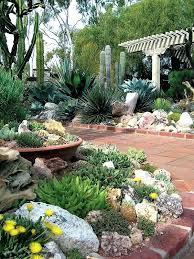 Cactus Garden Ideas Outdoor Cactus Garden Design Cactus Gardening Ideas Garden State