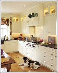 Led Under Cabinet Lighting Dimmable Direct Wire Led Under Cabinet Lighting Dimmable Direct Wire Home Design Ideas