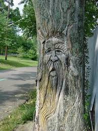 tree face carved greenman in tree a nocturnal wonderland pinterest
