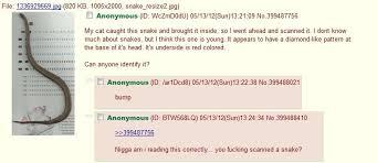 4chan Meme - meme folder subfolder 4chan
