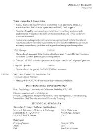 Example Of A Combination Resume by Resume For It Management Susan Ireland Resumes