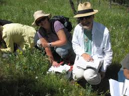 plants native to colorado native plant master program metro to mountain m2m jeffco