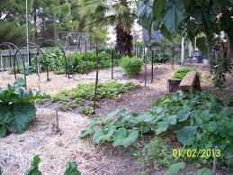 Strawberry Garden Beds Garden Seats Adrian Kuys