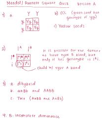 punnett square and pedigree answer keys ms schneider advanced