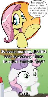 909656 bad advice fluttershy crossing the memes exploitable meme