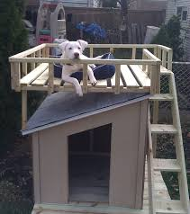 dog house with roof top deck the home depot community