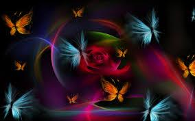 butterfly wallpaper qygjxz