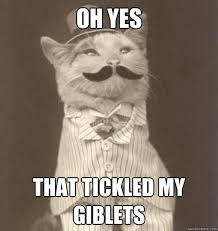 Tickled Memes - oh yes that tickled my giblets original business cat quickmeme