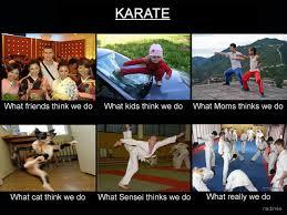 Karate Memes - whatpeoplethinkido 36 karate