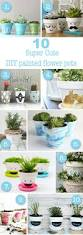 Flower Pots - best 20 flower pots ideas on pinterest potted plants deck