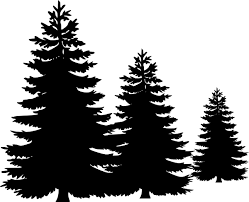 pine trees silhouette free clipart images 2 clipartandscrap
