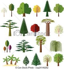 different types of trees trees from different regions of the world various types of clip