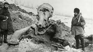 dna clues woolly mammoth died