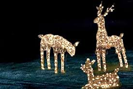 solar powered christmas lights tips for decorating with outdoor solar powered christmas lights