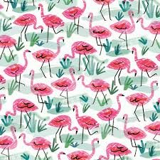one direction wrapping paper flamingos wrapping paper pattern wrapping papers