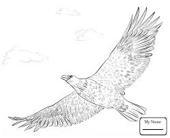 coloring pages for kids birds bald eagle soaring colorpages7 com