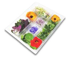 edible flower garnish chefs garnish of edible flowers and herbs greens of