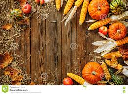 harvest or thanksgiving background stock photo image 77390804