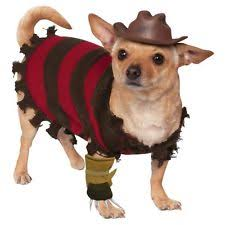 Funny Dog Costumes Halloween Costumes Dogs Ebay