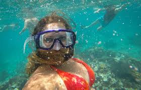 New Hampshire snorkeling images Snorkeling with sharks in belize adventurous kate adventurous kate jpg