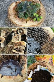 tree stump planters 16 inspiring diy tree stump projects for rustic home decor