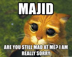 U Still Mad Meme - majid are you still mad at me i am really sorry puss in boots