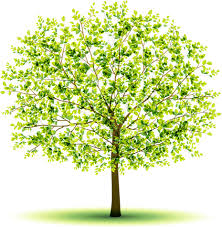 creative green tree design vector graphics free vector in