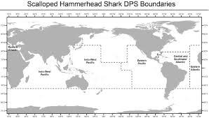 Shark Map Of The World by Scalloped Hammerhead Shark U003cem U003e Sphyrna Lewini U003c Em U003e Noaa Fisheries