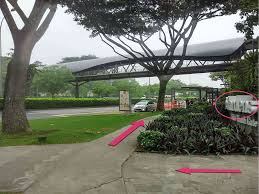 Singapore Botanic Gardens Mrt by Pathwaze