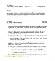 resume outline exle free executive summary template unique outstanding executive resume
