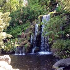 Huntington Botanical Gardens Pasadena by Download Pasadena Botanical Gardens Solidaria Garden