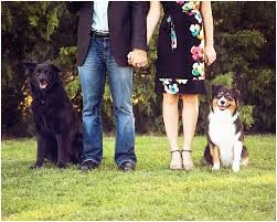 best 25 family pictures ideas on engagement