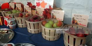 thanksgiving displays at cn smith farm pictures getty images