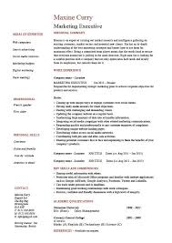 Experience Resume Templates Marketing Executive Resume Sales Example Sample Template