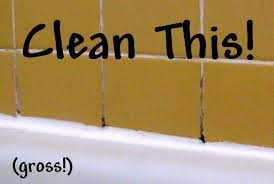 Cleaning Grout With Vinegar Finely Ground Cleaning Challenge Grout