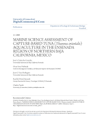 sle resume templates accountant general department belize flag marine science assessment of pdf download available